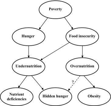 the issues of obesity and malnutrition in american schools Gilbert high school, iowa the obesity epidemic in america obesity and malnutrition one major issue with america's epidemic is the unfamiliar language that.
