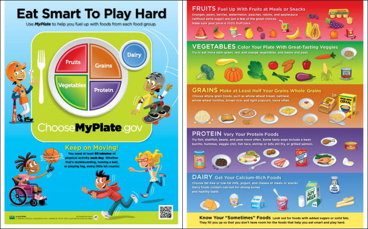 identify balanced meals snacks and drinks for children in their early years following current govern Scottish government  plan snack and meal times: we already know that young  children need to  snack time so that every child has a chance to eat and drink   dietary fibre as part of a varied, balanced diet is essential for good  1 to 5 years,  children who follow the 'five-a-day' guidance on fruit and.